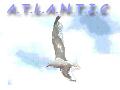 Site atlantic : formations gratuites au développement informatique
